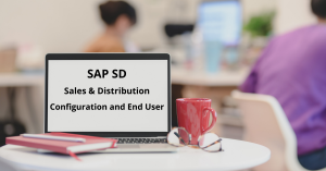 SAP SD (Sales & Distribution) – Configuration & End-User
